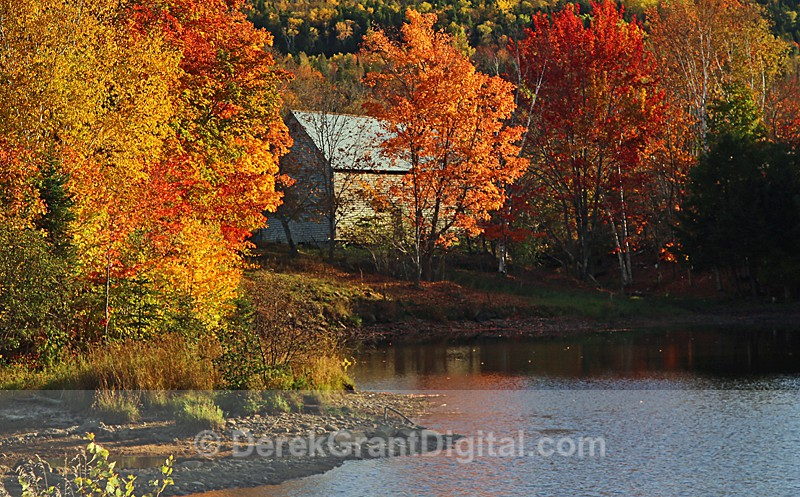 Old Barn in Autumn New Brunswick Canada - Old Barns & Buildings