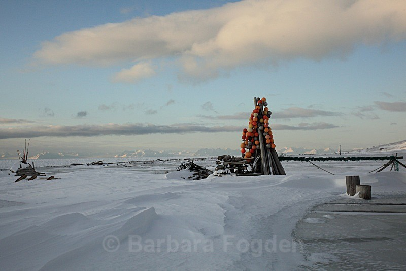 Hiortham 9856 - Winter in the daylight
