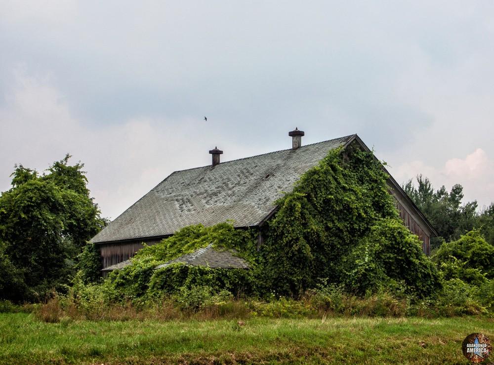 nature's delight - The Estey Farm