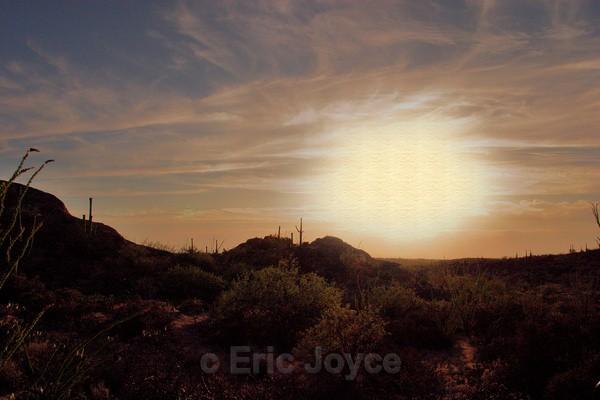 Desert Exposure II - Tuscon, Arizona