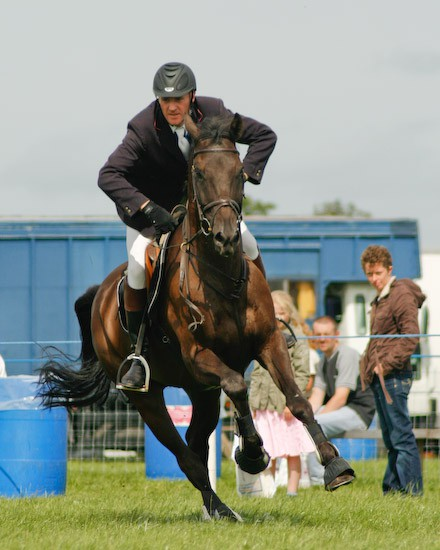 7 - Equestrian Photography