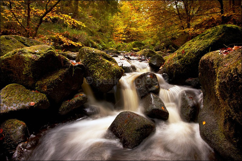 Wyming Brook Falls in autumn - Photographs of Woodland & Rivers