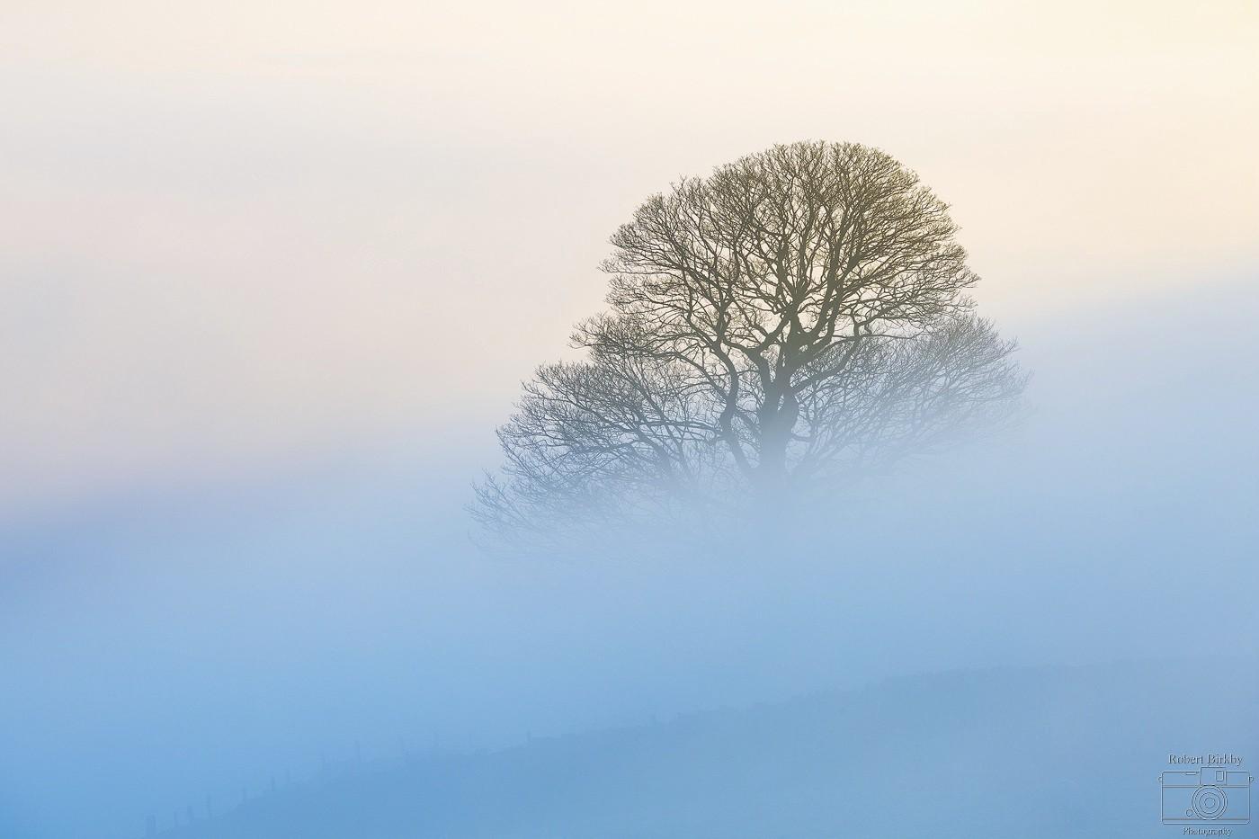 Cool Mist - Calderdale Landscapes