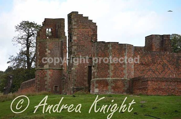 Bradgate House (© Andrea Knight) - Bradgate Park - Customer Images