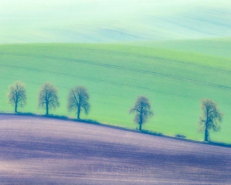 five - Moravia
