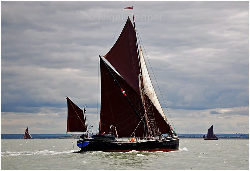 SB 'Wyvenhoe' (3) - The Thames Barge Match