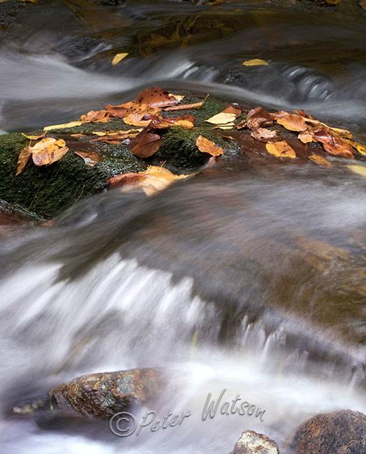 Horse Trough Falls Georgia USA - Rivers & Waterfalls