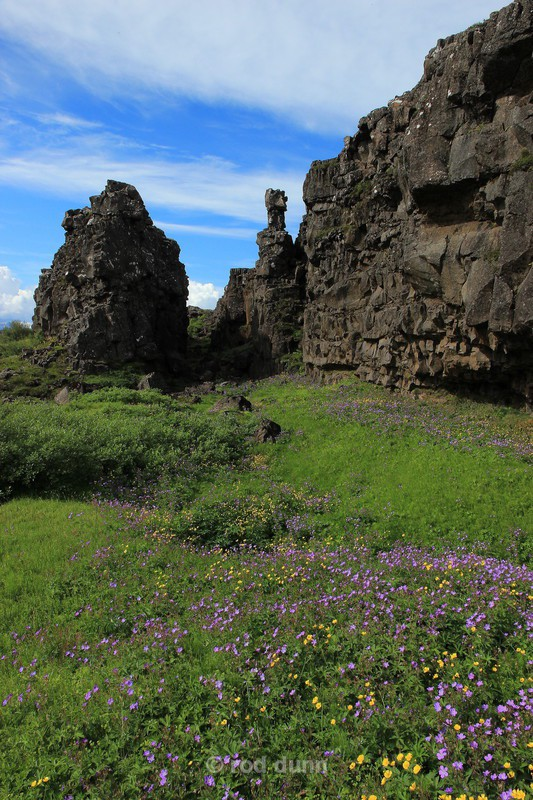 Thingvellir National Park - Iceland