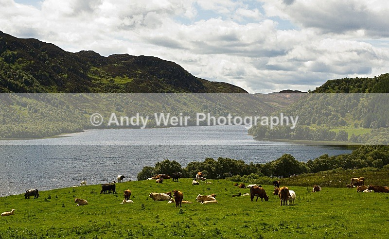 20090301-011 - Scotland