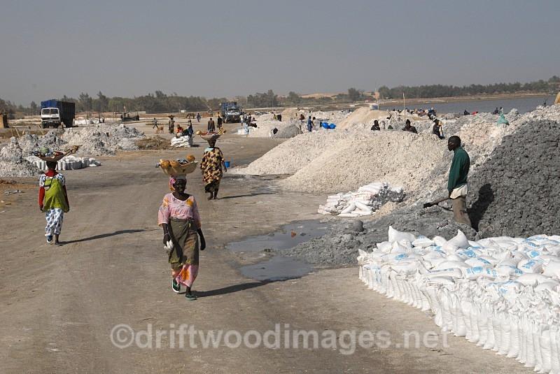 Senegal Lac Rose salt production 10 women walking along road - Salt Production in Senegal