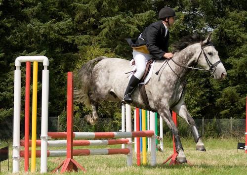 92 - Moniaive Horse Show 2008