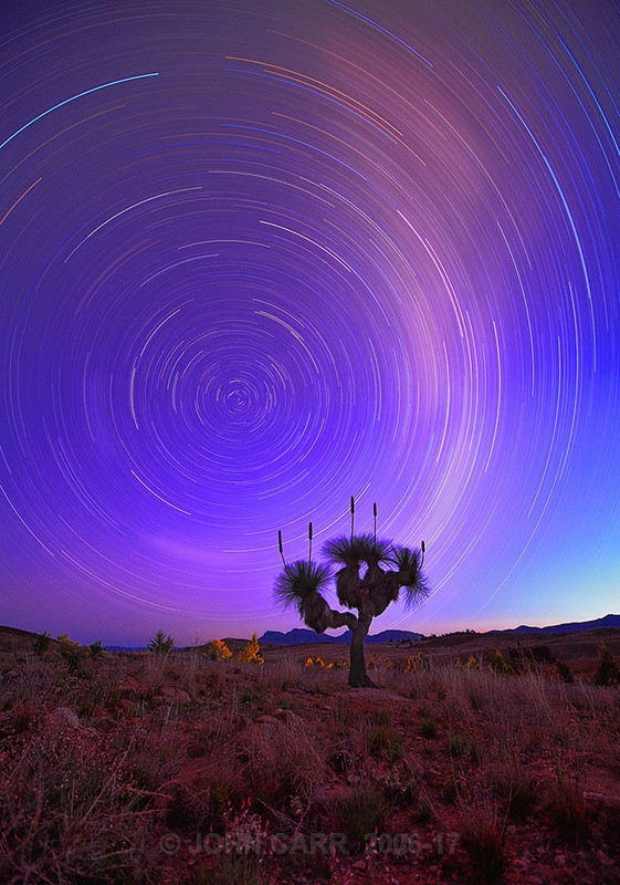 Star Trails & Grass Tree-8491 - THE STARS AND STORMY WEATHER PHOTOS