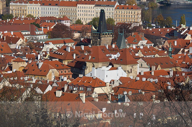 Terracotta roofs, Prague - Prague, Czech Republic