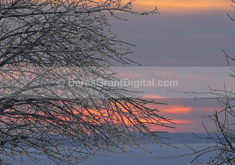 Twilight in Winter - Winterscape