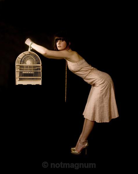 Watch the Birdie - STUDIO