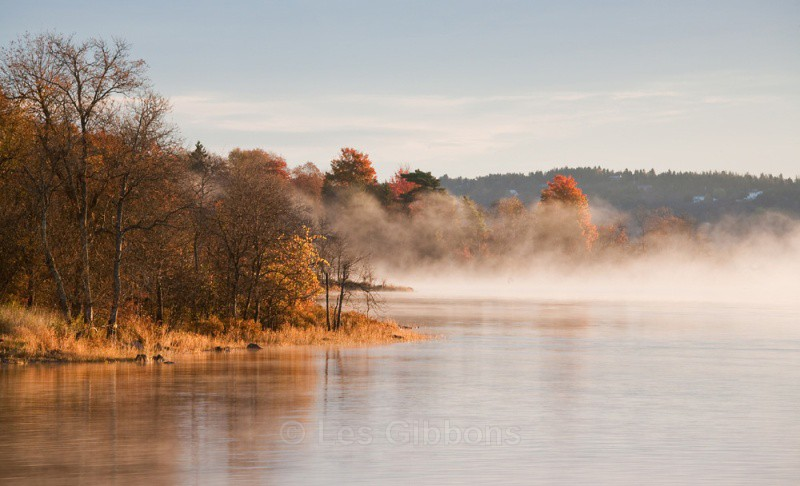 misty morning - New Brunswick