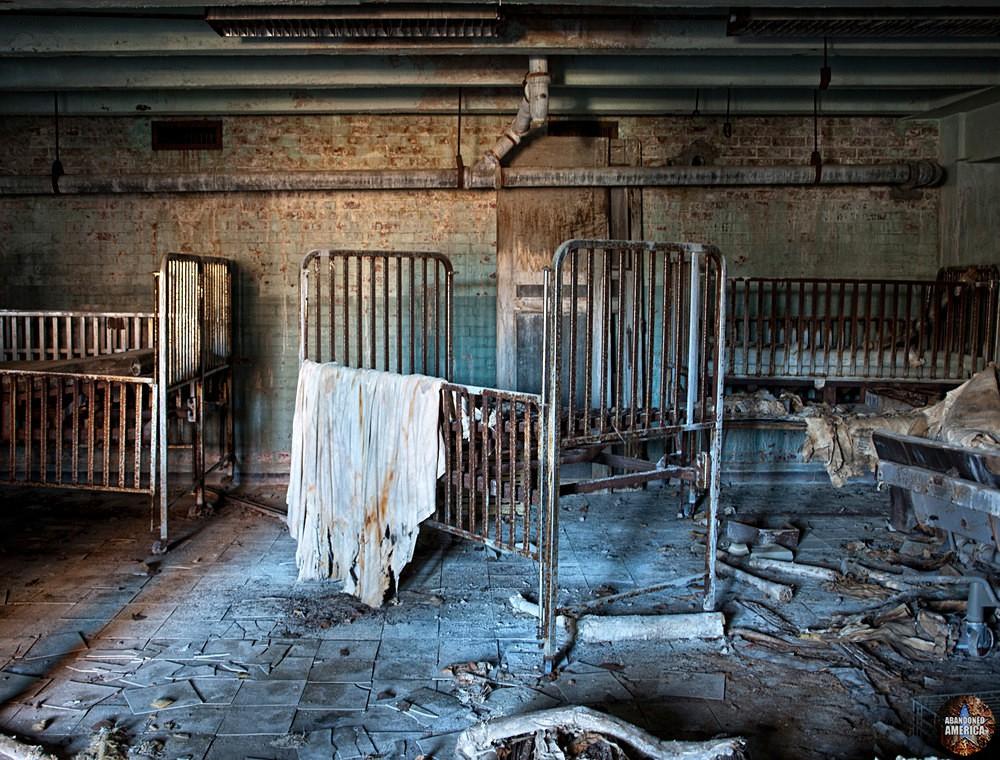 Forest Haven (Laurel, MD) | Basement Cribs - Forest Haven
