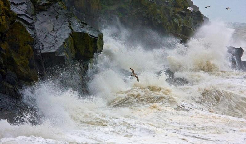 Enjoying the storm - Sea of Man