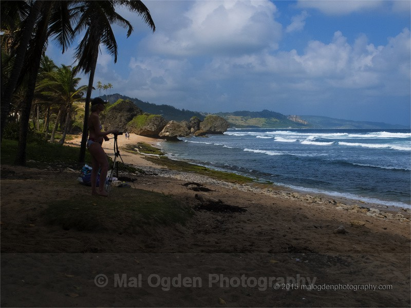 Bathsheba - Carribean Islands