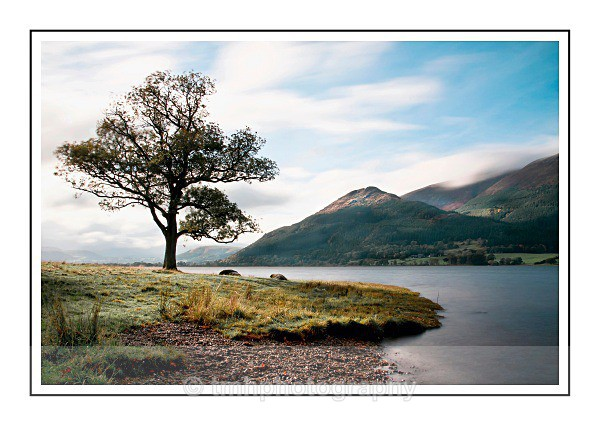 Shoreline on the Fells - Lakedistrict