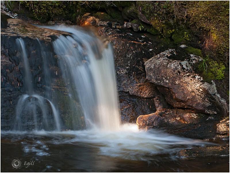 Bekk 20110917-IMG_3700 - Natur