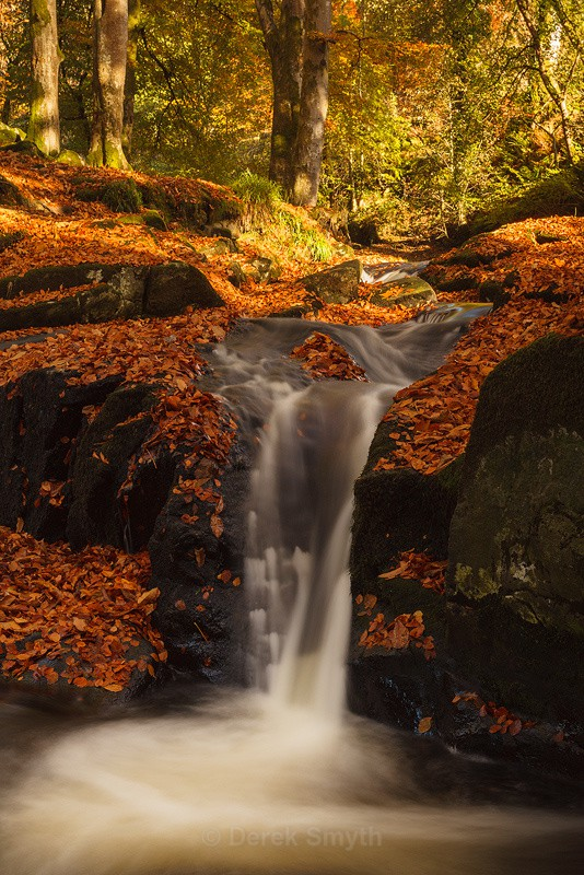 Autumn Fall On The Cloughleagh River