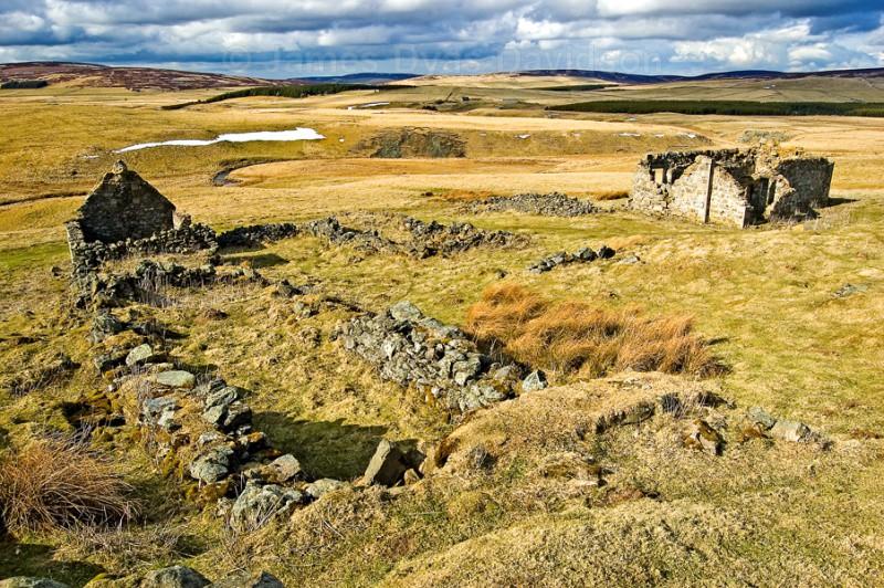 Bodiebae in situ - Cabrach