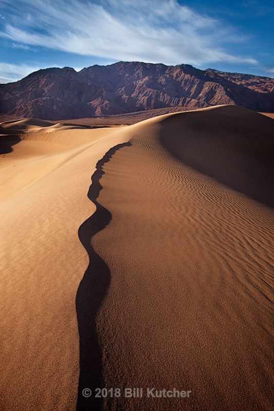 Mesquite Dune - Current Show