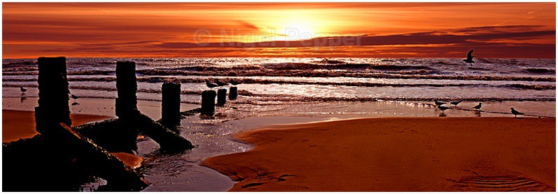 Incoming Tide - Sunrises and Sunsets