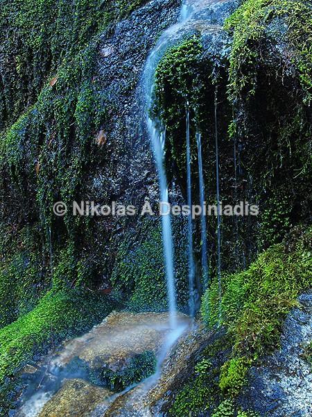 Ρυάκι Ι Stream - Βόρεια Ελλάδα Ι North Greece