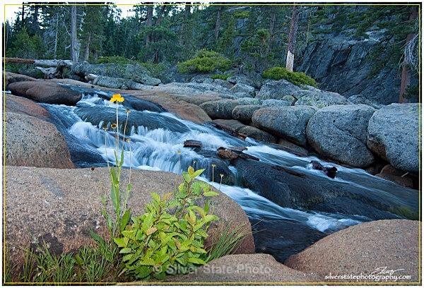 IMG_5298-1-web - Nevada (mostly) Landscapes