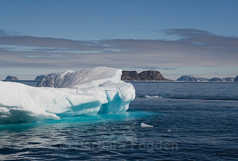 Iceberg 9007 - Summer time