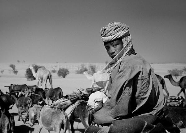 Darfur Refugees Tine Chad