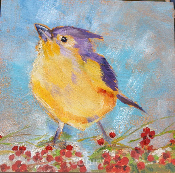 Titmouse - Colorful Critters