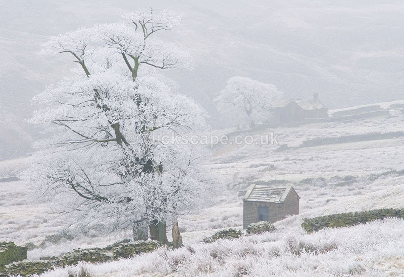Frost at Bradshaw Moor | Summer Wine Landscape Photography Gallery