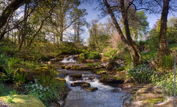 Nith Waterfall - Traditional Landscapes