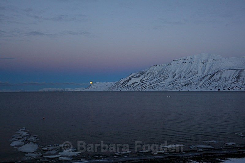 Adventfjord 4963 - Colours of Svalbard