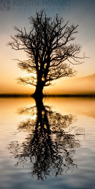 Reflections - Towy Valley - Wales
