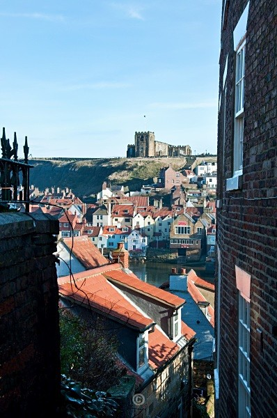 Whitby Rooftops - Whitby