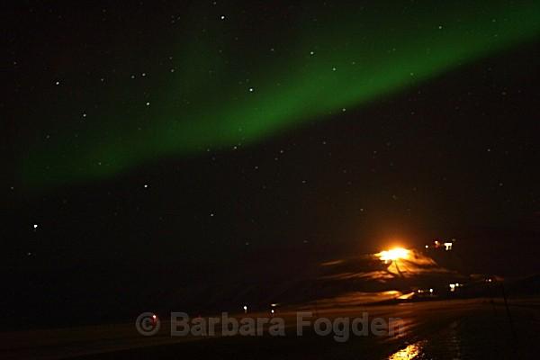 Northern Light 9302 - Polar night
