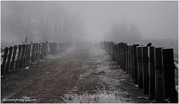 Corrals in the Fog - Nevada (mostly) Landscapes