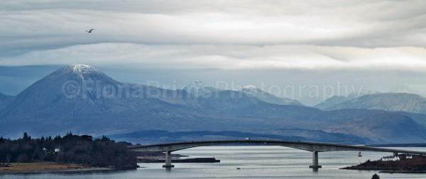 bridge - Landscapes and Seascapes