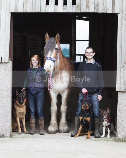 Equine Photo Shoot 1 - Equine Gallery Portfolio