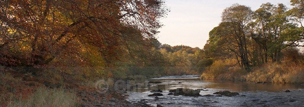 Autumn on the Nith - Panoramics