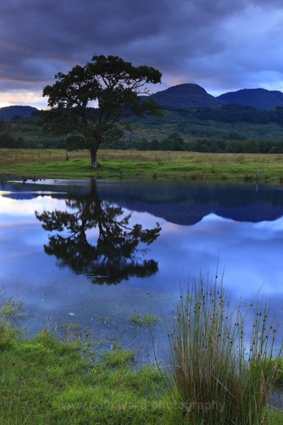 Twilight at Loch Eil   ref 1615 - West Highlands