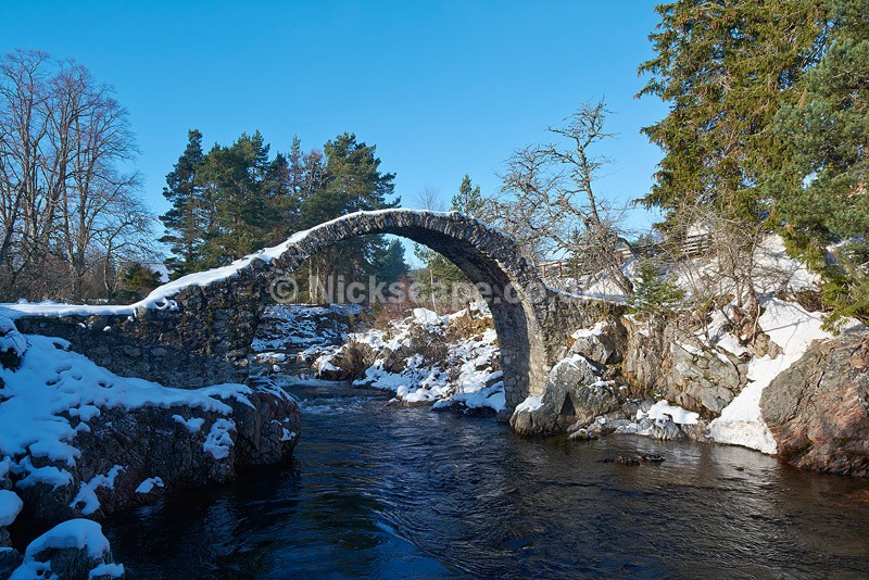 Photo of Carrbridge in the Cairngorms National Park | Scotland Gallery