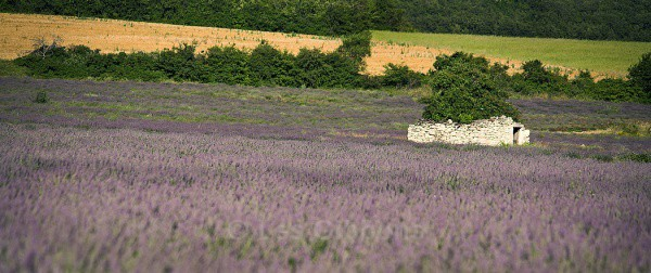 hut - Provence