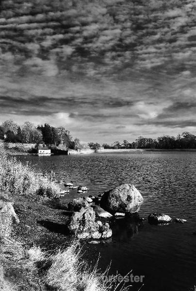 Duddingston Loch - Black and White