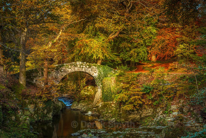 Foleys Bridge Tollymore Forest Park