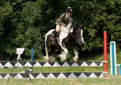 86 - Moniaive Horse Show 2008